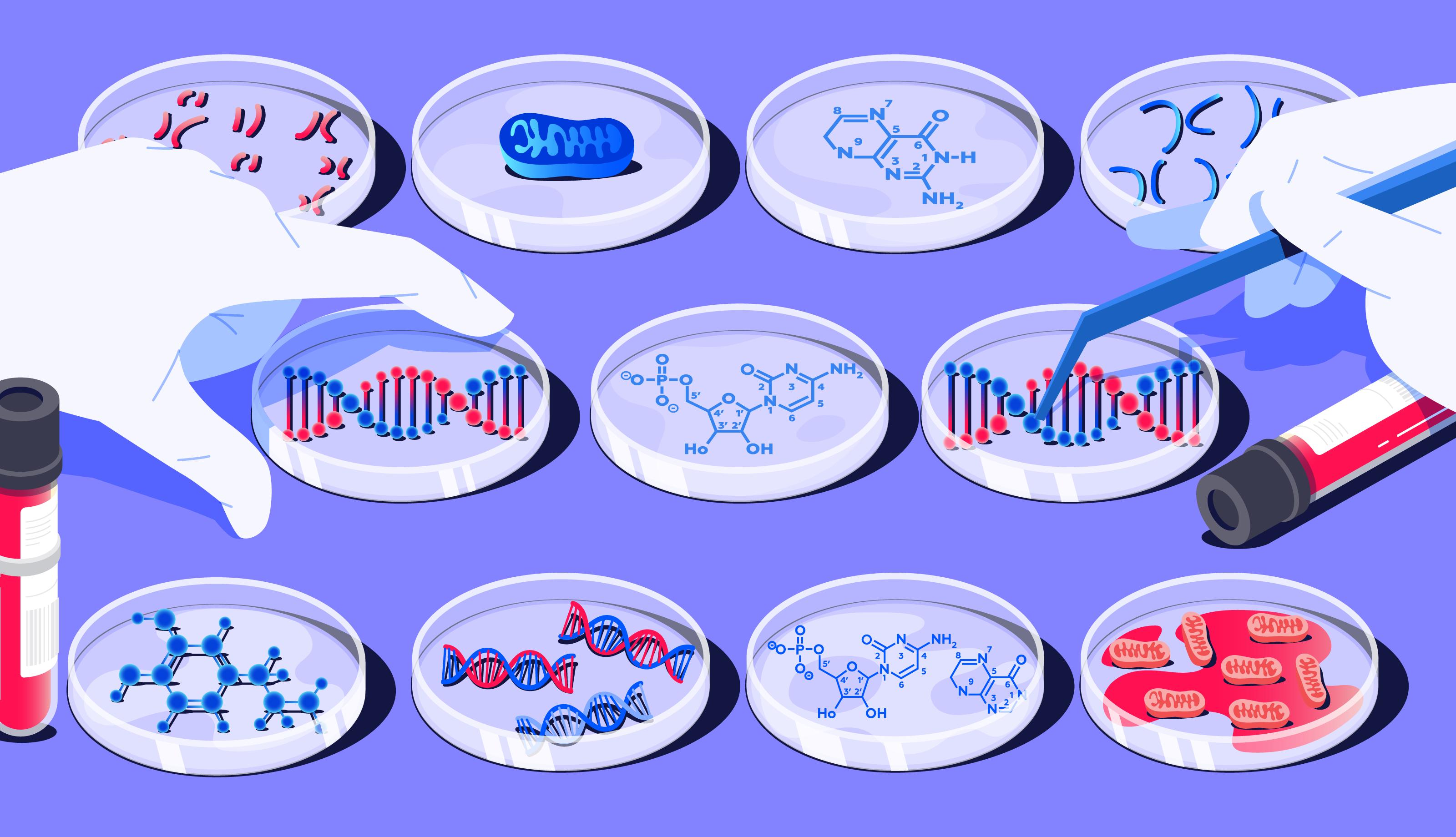 Ethics-DNA-genetic-test-1