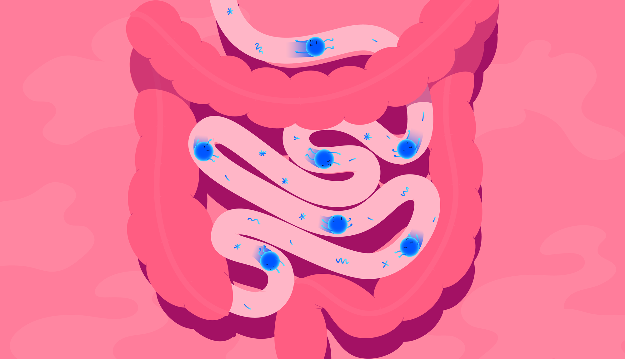 2021-01-13-Probiotics-guts-1